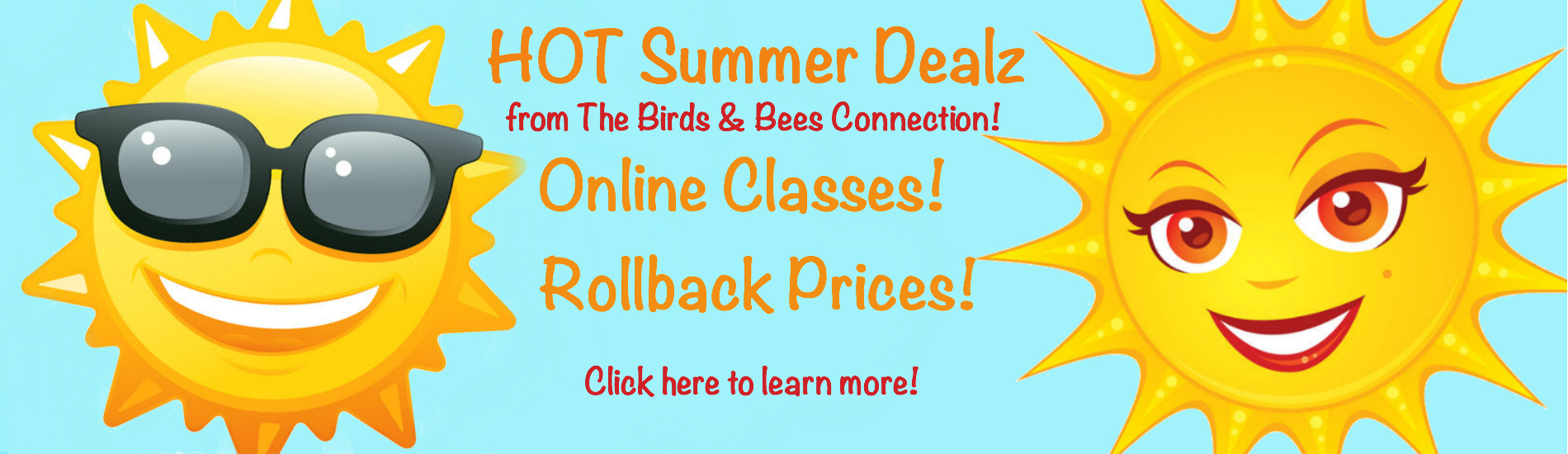 Summer Dealz
